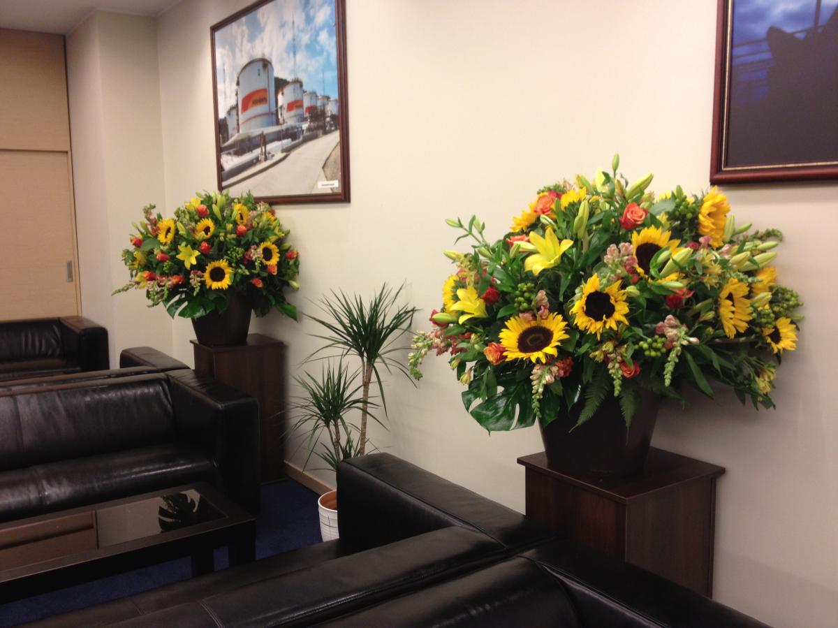 Как украсить офис цветами фото